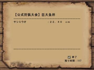 Mhf_20090116_211814_474